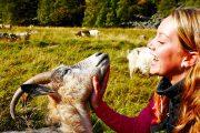 Foto:Flåm AS Fotograf:Morten Rakke